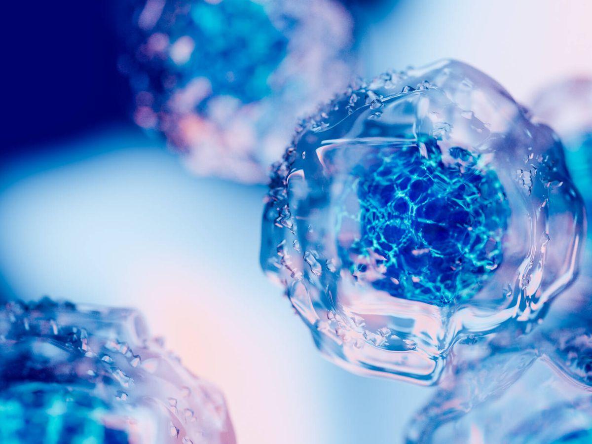Estos son los tipos de cáncer asociados a mayor riesgo de arritmia, según  un nuevo estudio