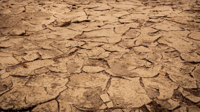 Julio de 2021 quedará en los registros climatológicos como un periodo seco o muy seco. Foto: Unsplash