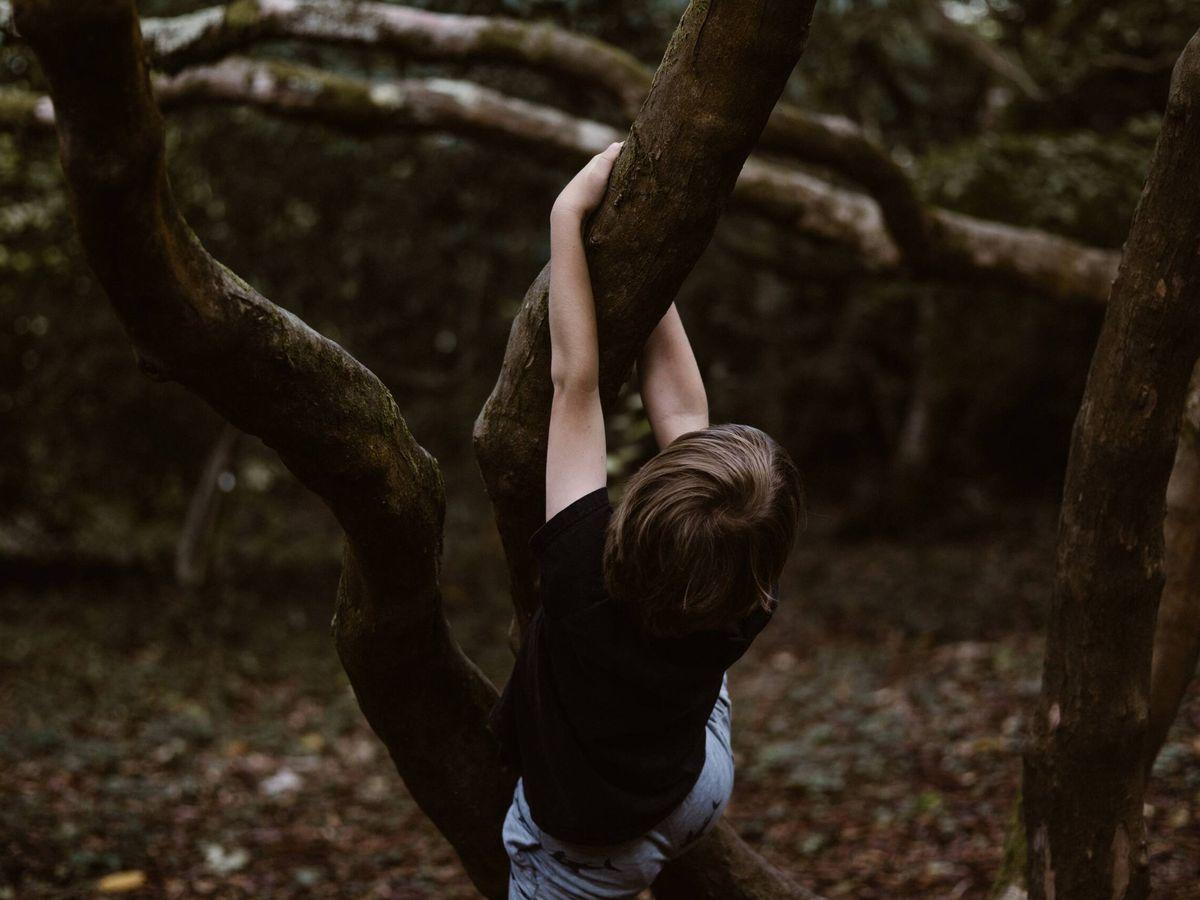 Foto: Un niño, gozando de la fascinación por la Natura que con los años perdemos, o nos quitan. (Unsplash/@anniespratt)