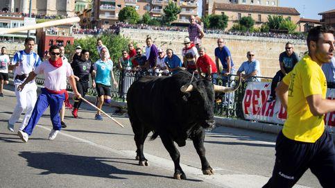 El TS cierra a Tordesillas la última vía para defender el Toro de la Vega