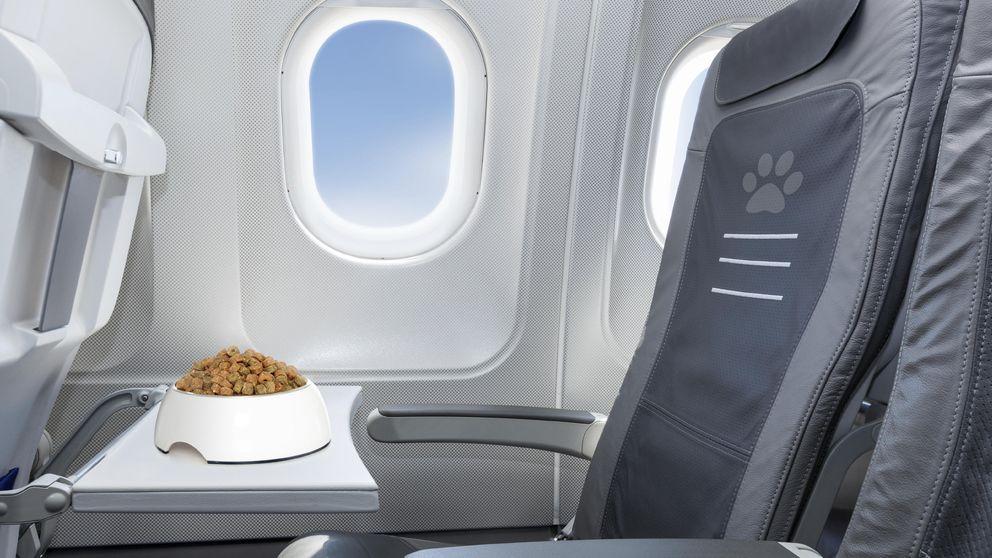 El truco que las aerolíneas utilizan para sacarte la pasta y que todos copian