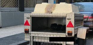 Post de Decomisan 120 kilos de bonito transportados en un remolque para perros para su venta