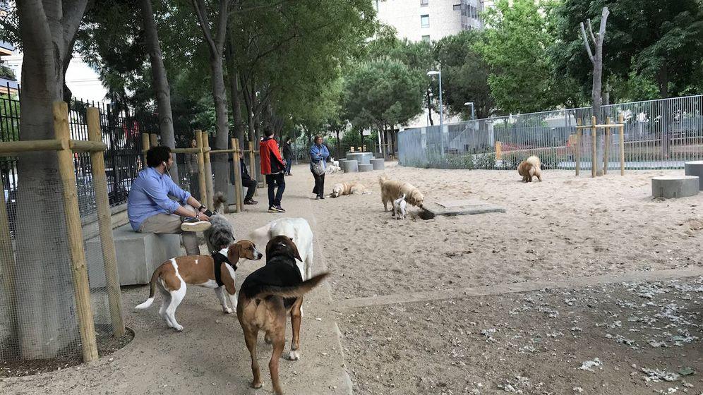 Foto: Los propietarios de perros se manifestarán este jueves en Barcelona.