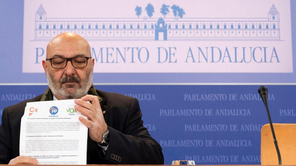 Foto: El portavoz del grupo parlamentario de Vox, Alejandro Hernández. (EFE)