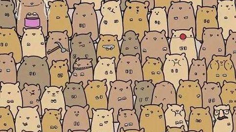 Acertijo viral: ¿eres capaz de encontrar la patata entre los ratones?