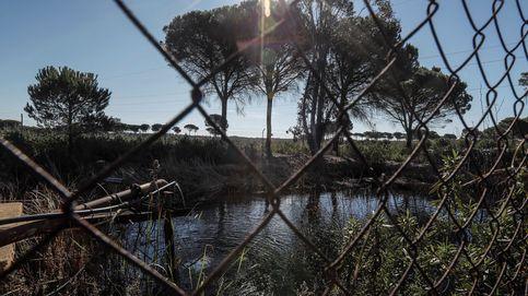 Dos detenidos por la muerte de un trabajador al caerse a un pozo en Lucena (Huelva)