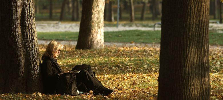 Foto: Una mujer lee un libro en un parque (Reuters)