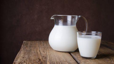 Leche sintética y sin vacas, ¿en qué consiste este invento 'revolucionario'?