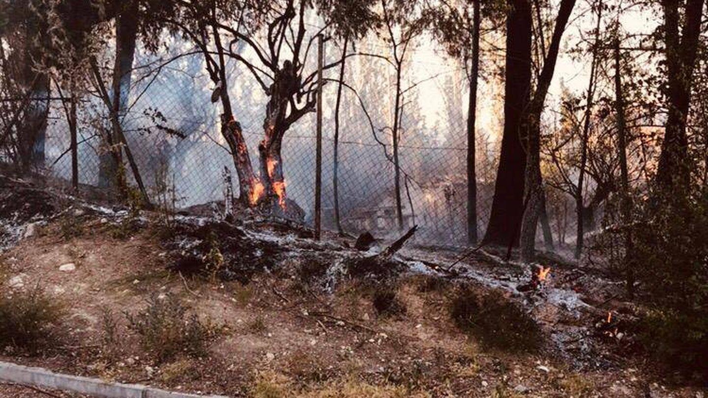 El incendio que se produjo el pasado 1 de junio en la parcela del museo.