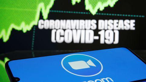 Récord de ingresos de Zoom y cae un 14%: Wall Street cree que el impulso del covid se acaba