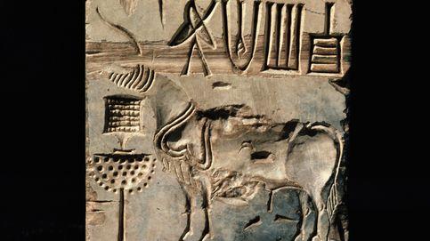 El código indo, el misterio de la cultura perdida más grande de la historia