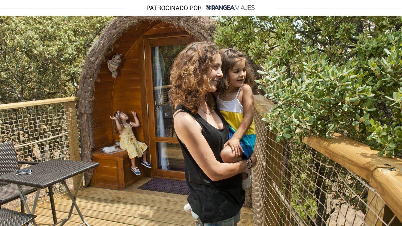 Dónde dormir en un árbol en la Comunidad de Madrid: alojamiento en las alturas