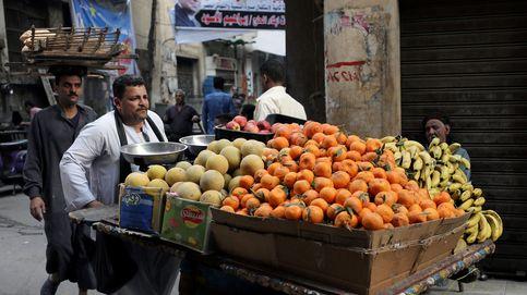 A la rica fruta en Egipto