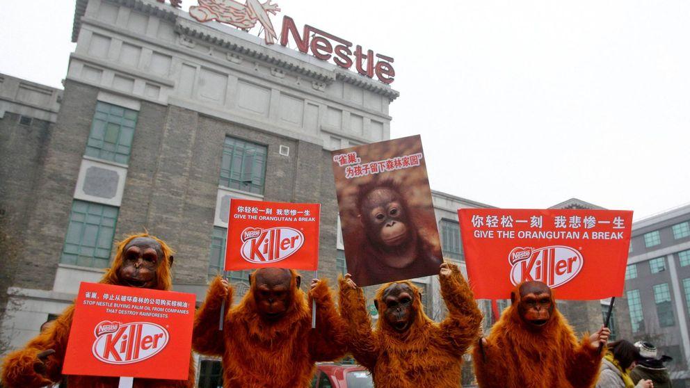 Nestlé perderá el sello de aceite de palma sostenible por ser opaco y no colaborar
