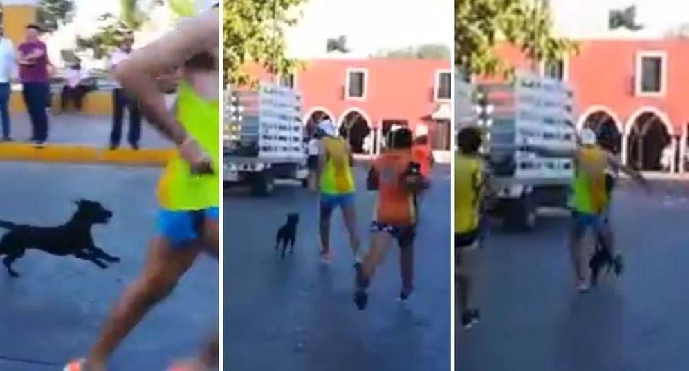 Foto: En el vídeo compartido en redes se aprecia cómo el corredor patea al perro y lo tira al suelo.