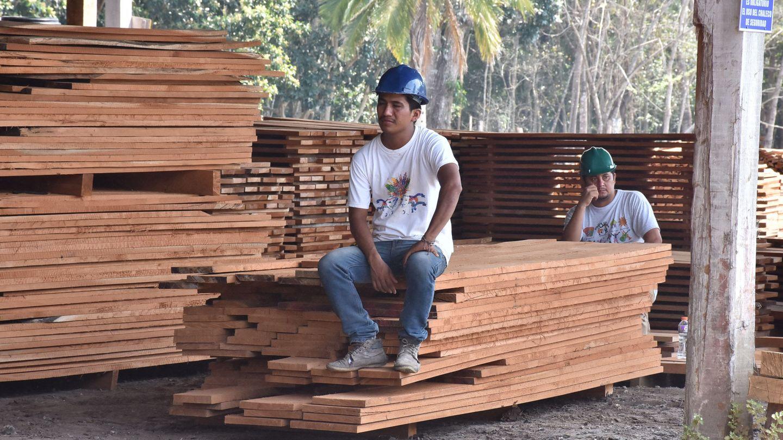 El narcotráfico es una de las principales amenazas a la Biosfera Maya en Guatemala. (EFE)