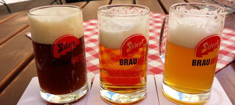 Foto: Conejo y cervezas