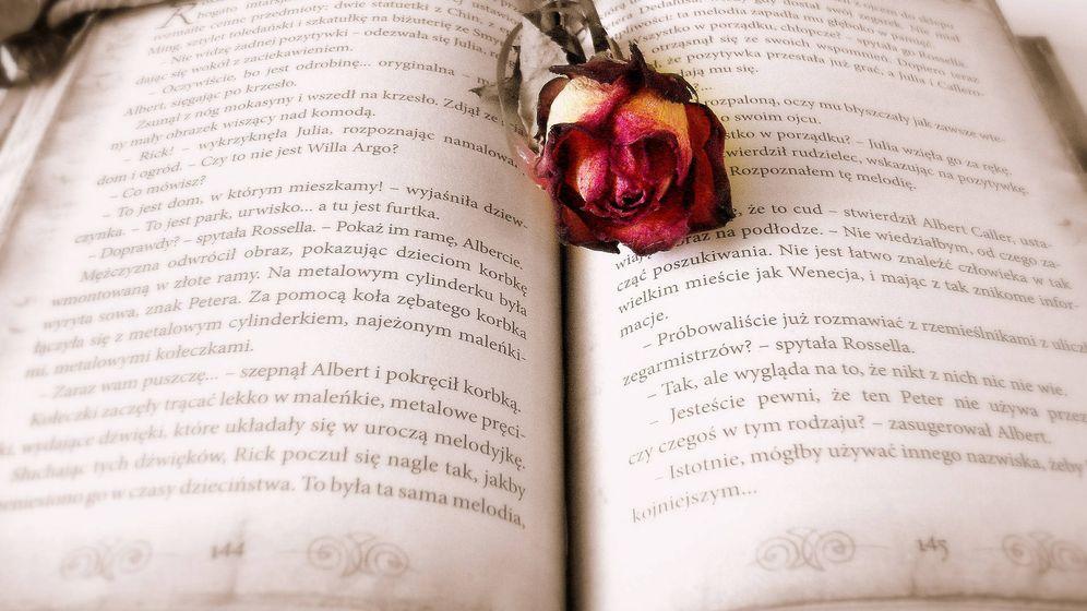Foto: Lecturas románticas (Pixabay)