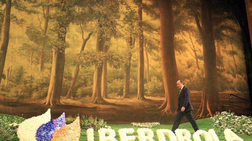 Multa de 25 millones a Iberdrola por manipular el precio de la energía
