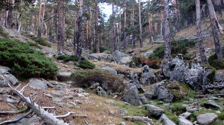 Vistas del Camino Schmidt. (Wikipedia)