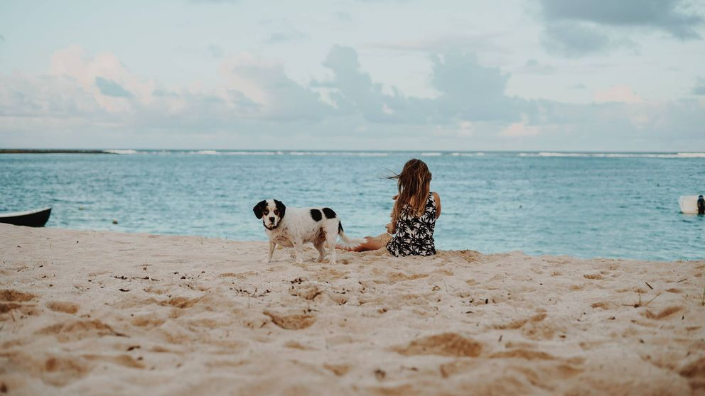 Las mejores playas para perros que puedes encontrar en España para tus vacaciones