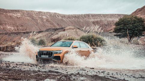 Llega el nuevo Audi Q8: rasgos coupé y la polivalencia del SUV