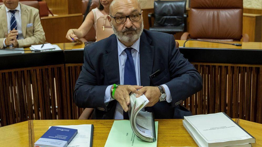 Foto: El portavoz de Vox en Andalucía, Alejandro Hernández. (EFE)