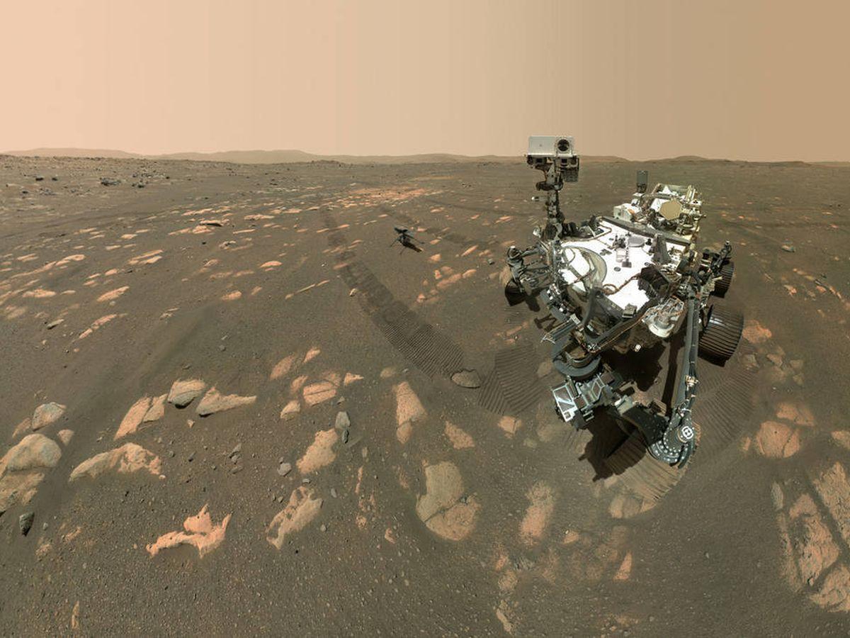 """Foto: Los microbios """"han estado en la Tierra durante miles de millones de años"""". (NASA)"""