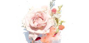 Post de Todos los beneficios de la rosa en belleza y los mejores productos que la contienen