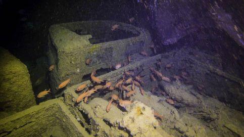 El curioso auge de las bodegas submarinas