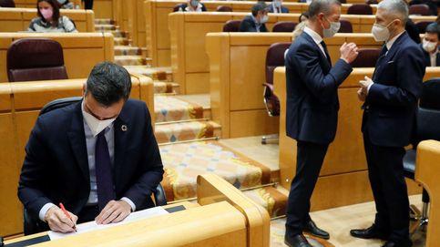 Vídeo en directo | Siga la sesión de control al Gobierno en el Senado tras la aprobación de los indultos