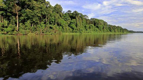 Las áreas naturales protegidas han aumentado el equivalente a Rusia