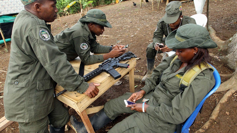Guerrilleros de las FARC esperan su desmovilización, en marzo de 2017. (EFE)