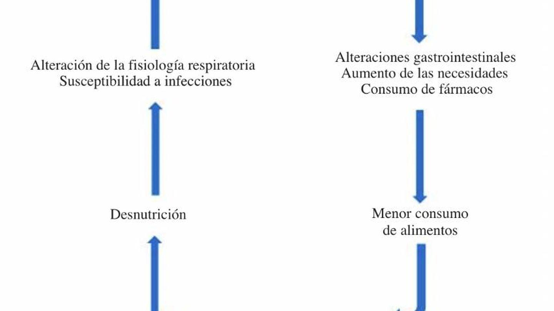 El círculo vicioso de la nutrición y el covid-19.