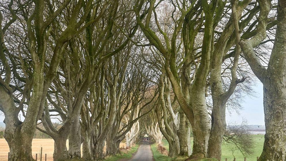 Viaje (un poco friki) por los escenarios de 'Juego de Tronos' en Irlanda del Norte
