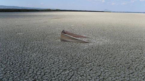 Nos llevará millones de años recuperar la biodiversidad que hemos destruido
