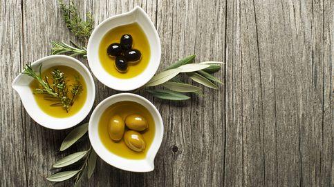 Xylella: el armagedón de nuestro aceite de oliva y nuestro vino