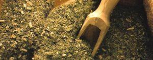 Foto: La yerba mate irrumpe en la cocina gourmet como ingrediente vanguardista