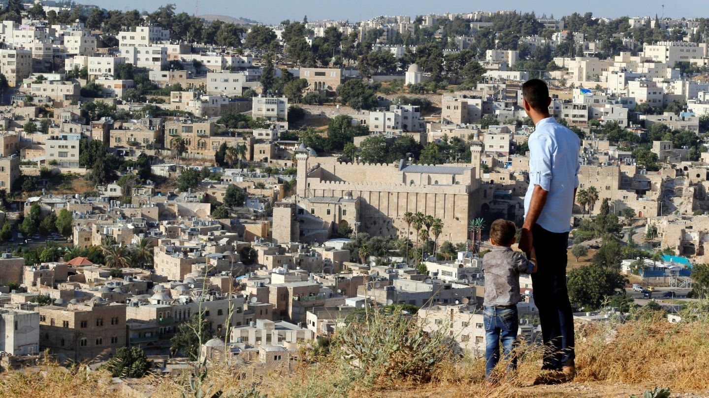 Un palestino contempla desde un montículo a las afueras de Hebrón la vista de la ciudad. (Reuters)