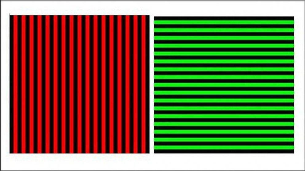 ¿De qué color son las líneas? El juego que vuelve locos a los británicos