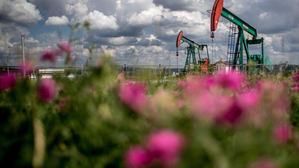 Foto: Campo petrolífero (Efe)