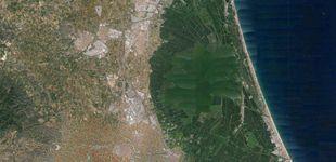 Post de Valencia huye de un desastre ambiental: estos filtros verdes son sus nuevos héroes