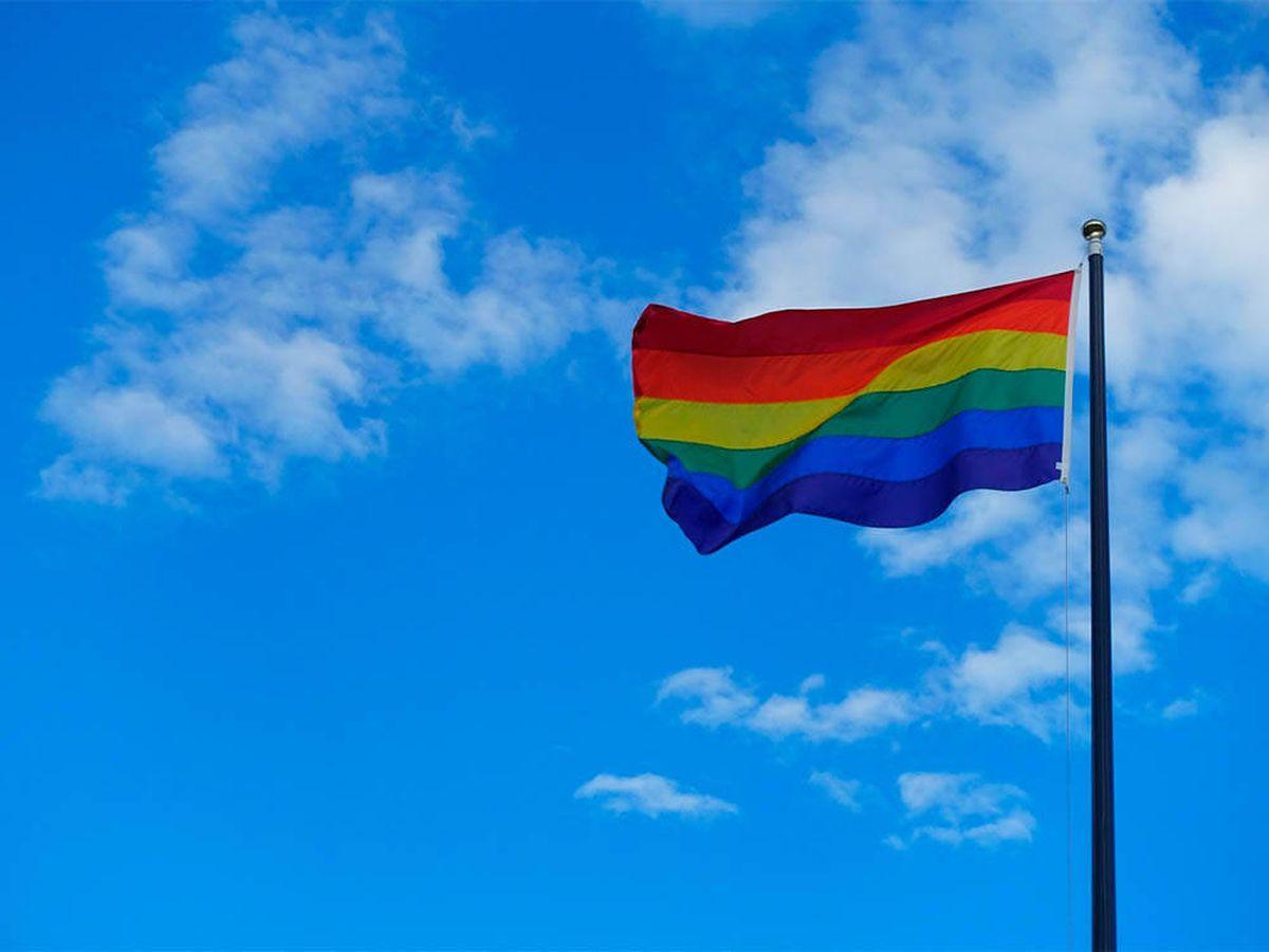 Foto: Despiden a una profesora por sugerir a sus alumnos que juren lealtad a la bandera LGTBI (Pixabay)
