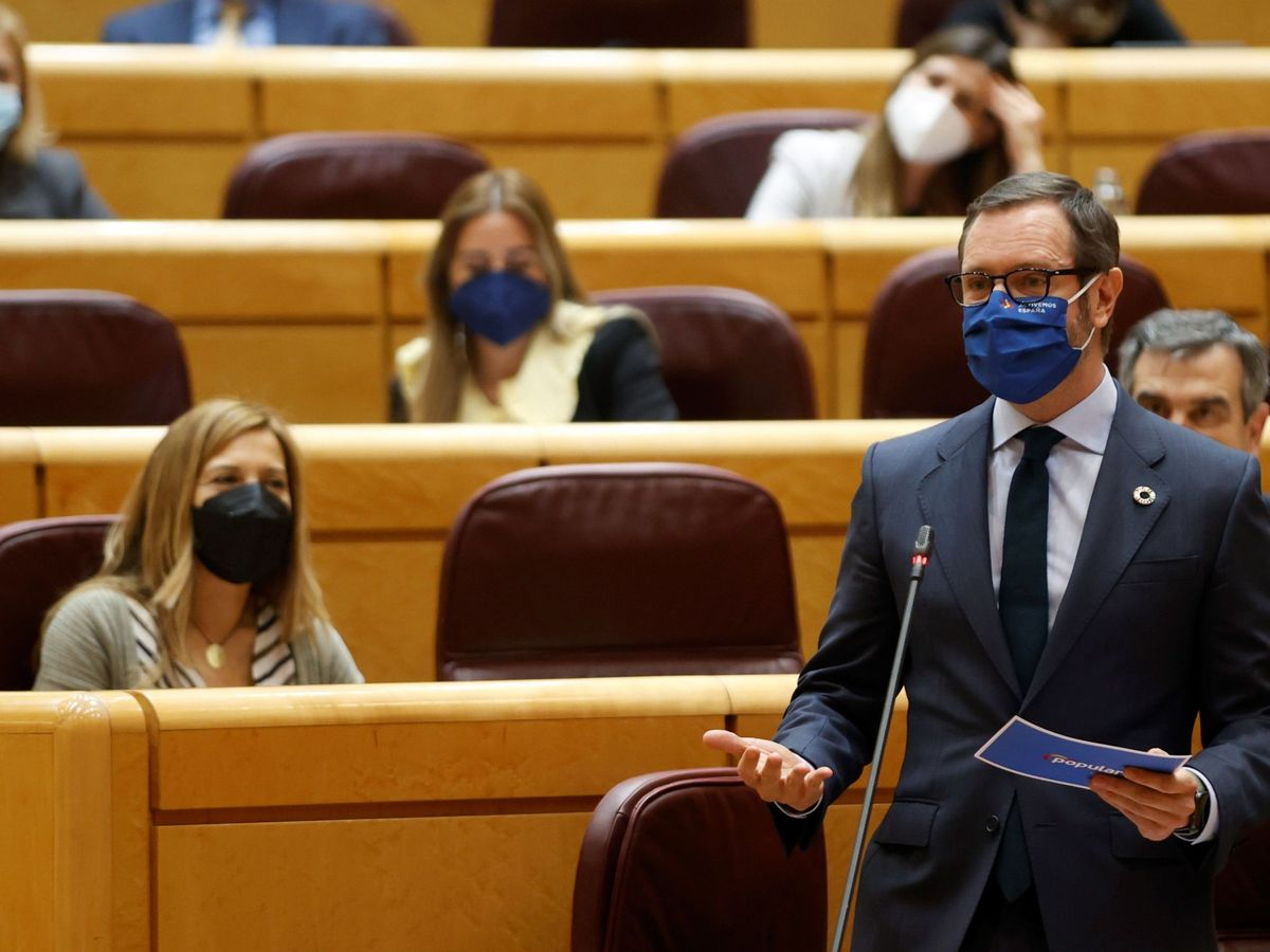 Foto: El portavoz del PP en la Cámara Alta, Javier Maroto. (EFE)