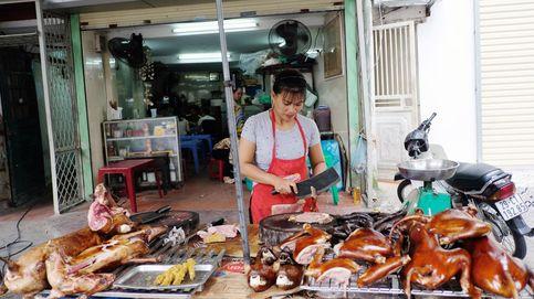 Los mercados húmedos en China siguen vendiendo perros como alimento