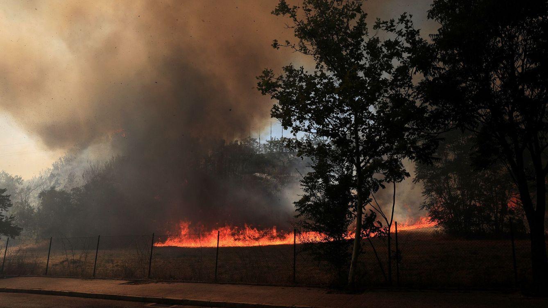 Filomena no acabó en enero: ya se deja sentir en la campaña de incendios