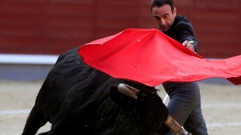 La milla de oro de las fincas taurinas: entre Extremadura y Andalucía
