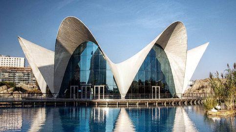 Valencia y Alicante, las mejores ciudades del mundo para vivir para los expatriados