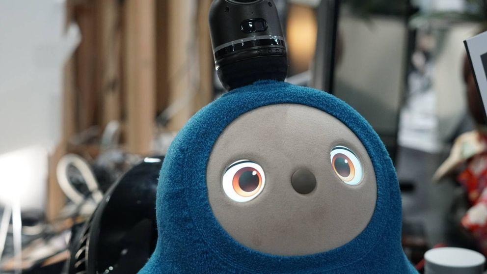 Lovot, el robot creado para dar amor