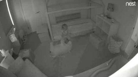 Las travesuras de dos Golden Retriever y una bebé por la noche